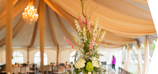 Custom Tents & Homepage - Event Elements | Wichita KS